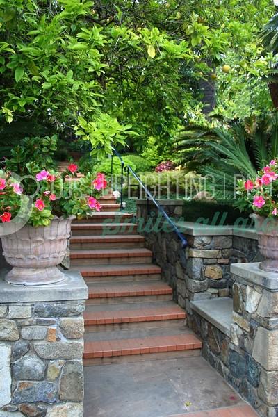 Garden Steps_batch_batch.jpg