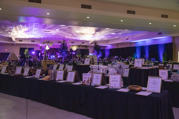 Charity Ball 2019 Event Photos