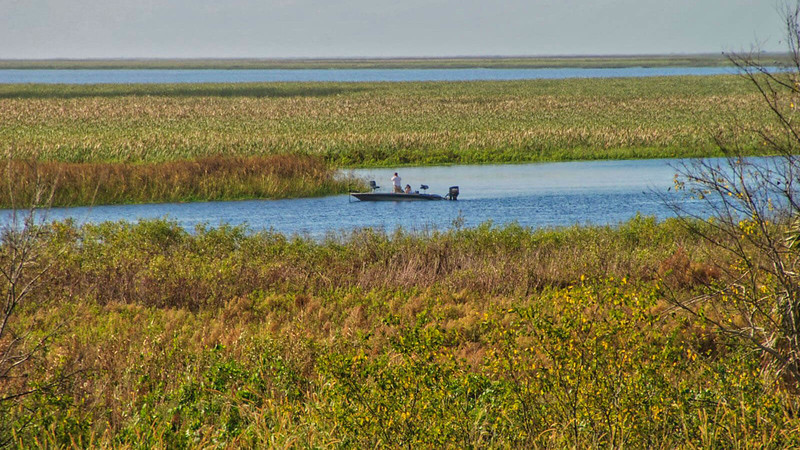 Anglers in the Lake Okeechobee marshes