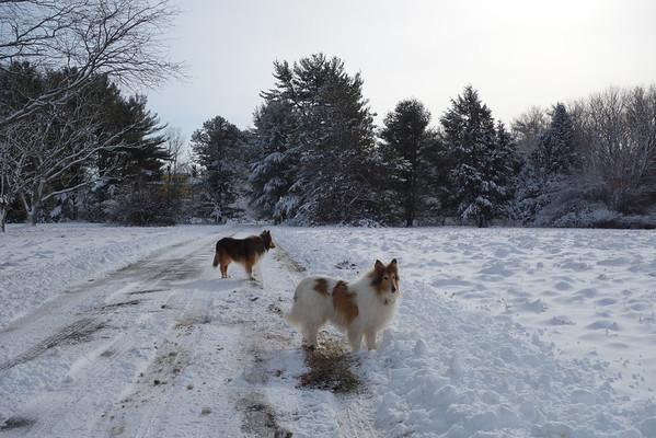 Milton Dec. 2012 Snow