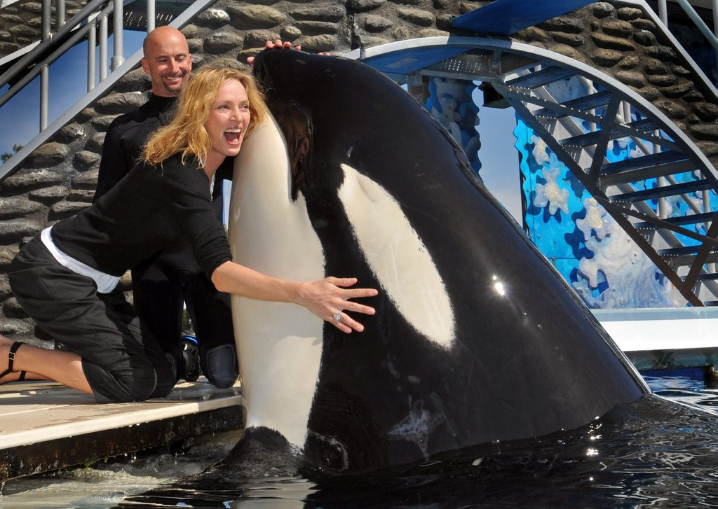 """. <p>6. SEAWORLD <p>If you�ve seen �Blackfish,� you know they�ve got a whale of a p.r. problem. (unranked) <p><b><a href=\'http://www.businessweek.com/articles/2013-12-11/seaworlds-latest-problem-rock-stars-wont-perform-there\' target=\""""_blank\""""> HUH?</a></b> <p>   (Bob Couey/SeaWorld San Diego via Getty Images)"""