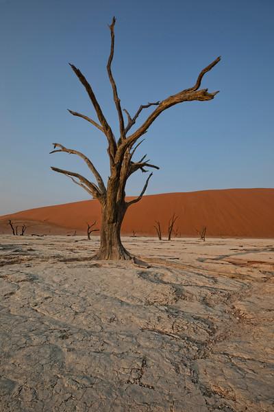 Namibia 69A4963.jpg