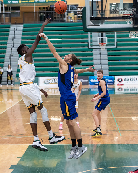 Basketball - UofA Bears vs UBCO Heat