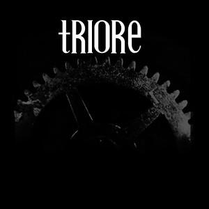 TriORE (DE/SWE)