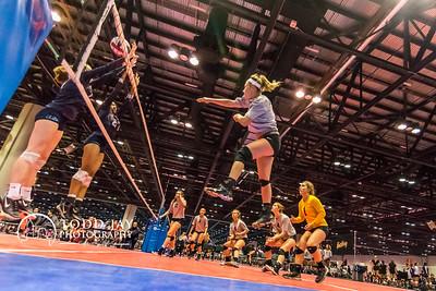 Volleyball Maverick at AAU Florida