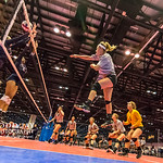 Volleyball Maverick at AAU Florida