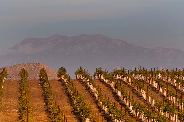Temecula Valley, Southern California