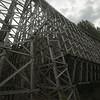 Bridge Unedited Capture NX-D