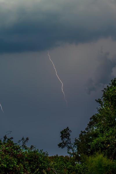 LightningDamNeck-001