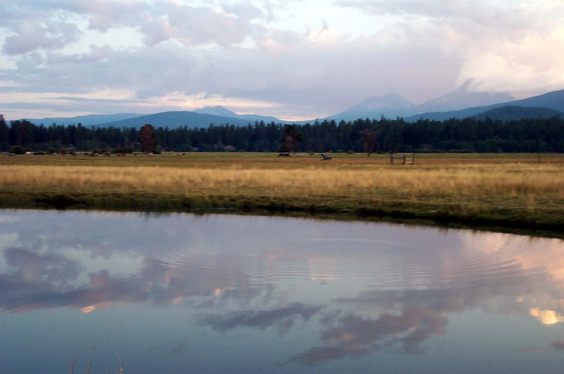 Copy of 82202 sunset meadow.JPG