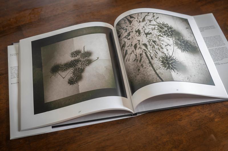 Botanica Book.jpg