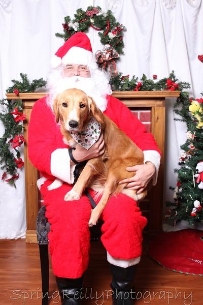 2015 Uxbridge Pet Valu Portraits with Santa