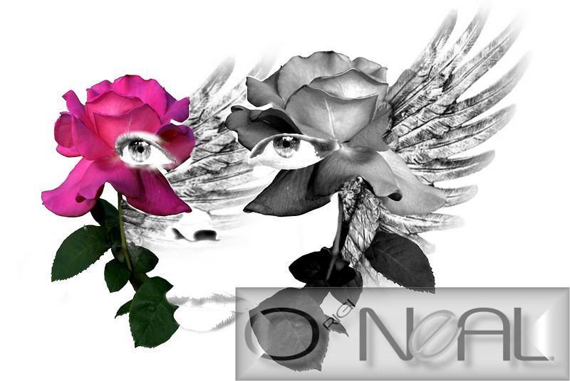 full face wing rose - 1.jpg