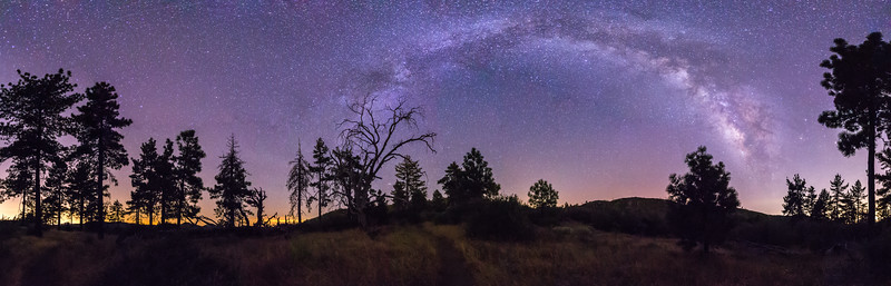 Panorama of the Milky Way over trees in Noble Canyon