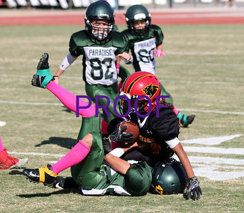 Jr. Peewees s. Chico Panthers  10/7/2017