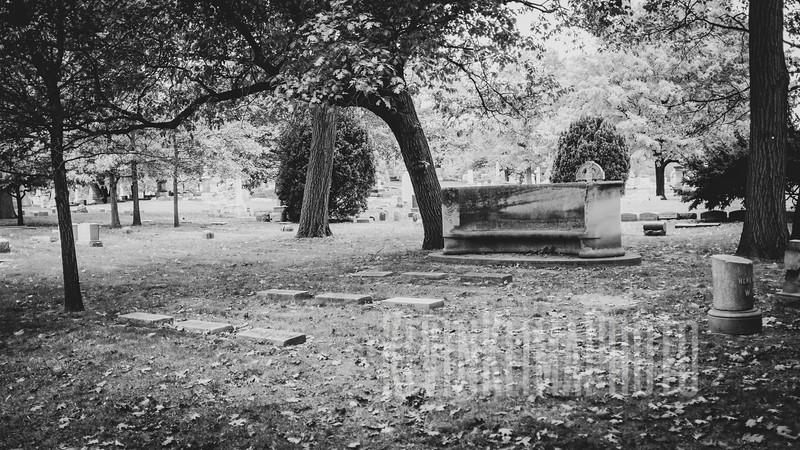 GracelandX100F-49.jpg