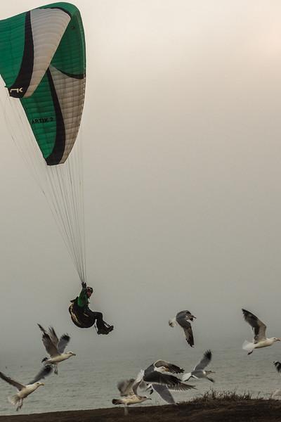 *HMB-paraglider-2014.jpg
