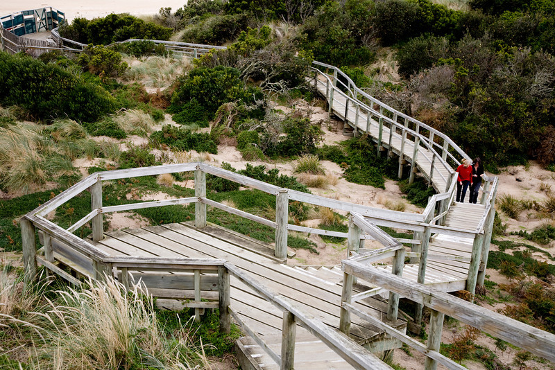 Bruny Island is really two islands joined by a narrow isthmus. This is at the top of the ridge on the isthmus. The stairs lead down to the beach. The area is a rookery for tiny penguins and shearwaters.