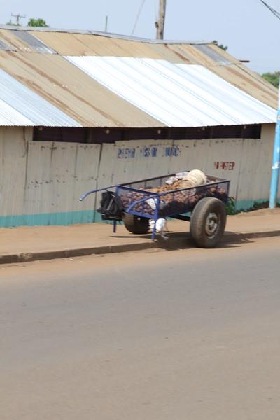 Kenya Part1 '15 990.JPG