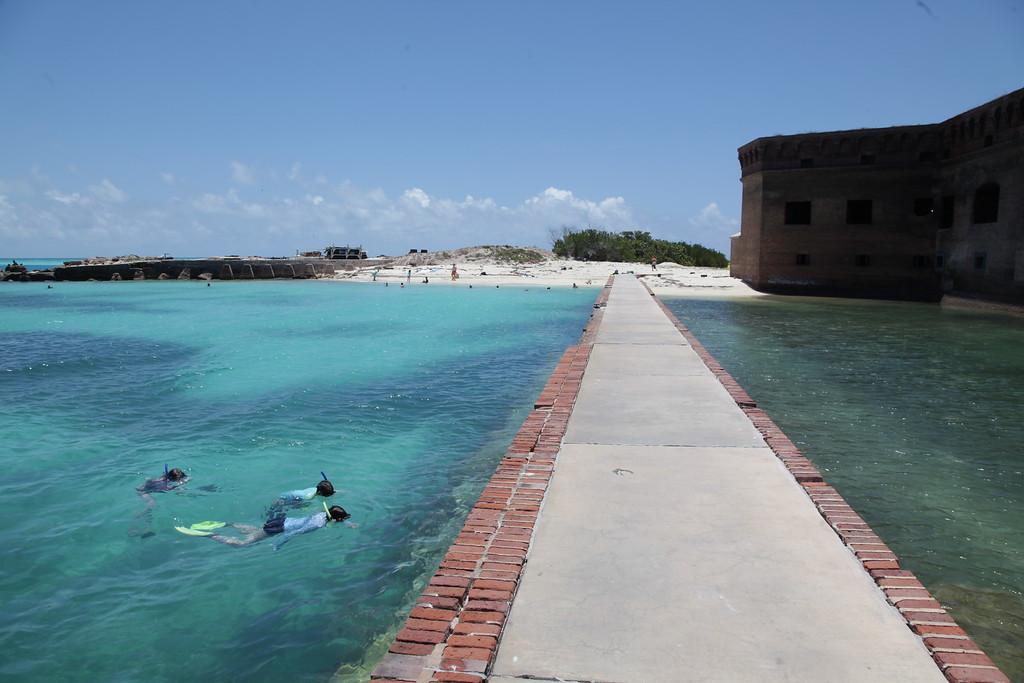 Mis hijos buceando en el agua en nuestra excursión de un día a Dry Tortugas