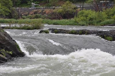 2010 - Deschutes River - The hole