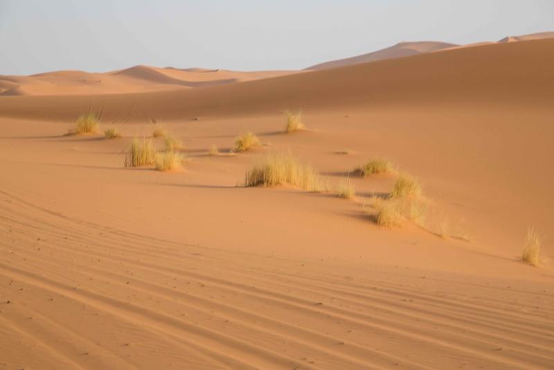 160925-020319-Morocco-0372.jpg