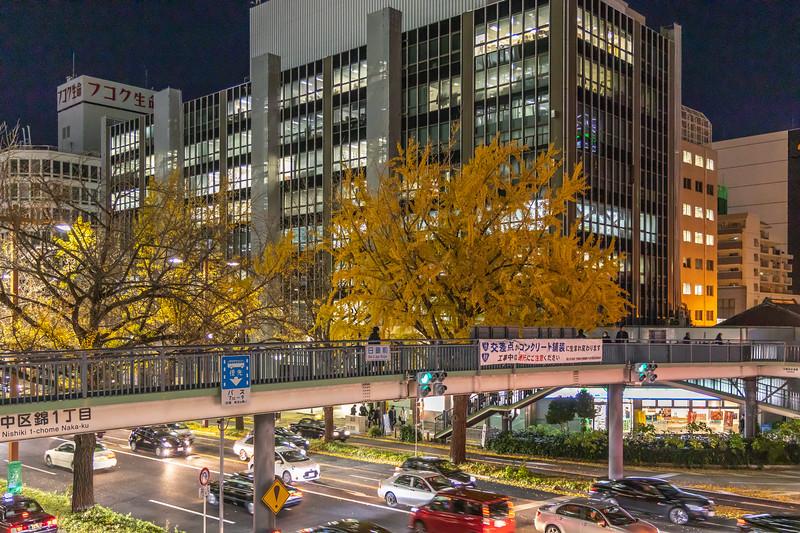 Nagoya12122018_068.jpg