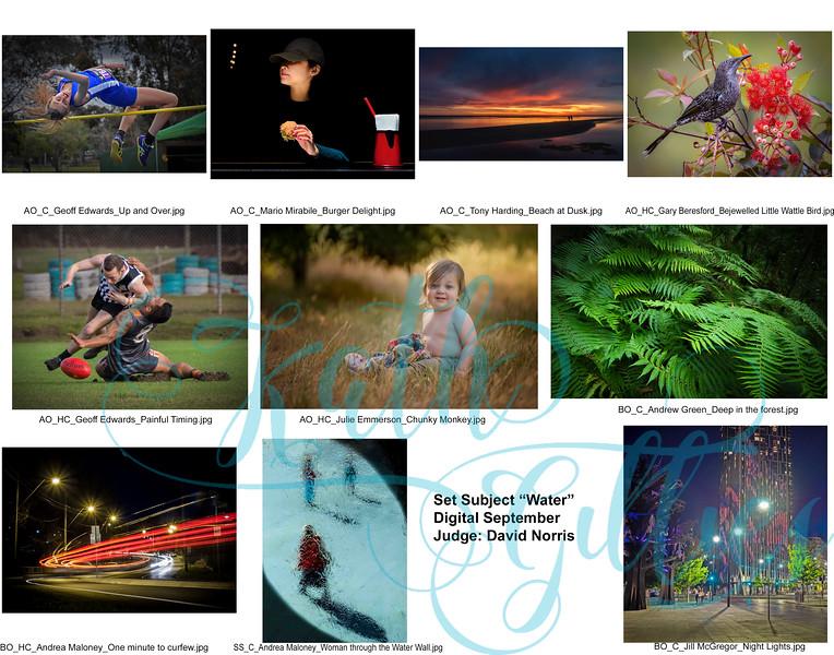 9 digital water .jpg