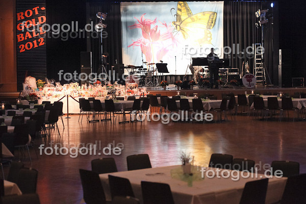 TSC Rot-Gold Ball 20120317