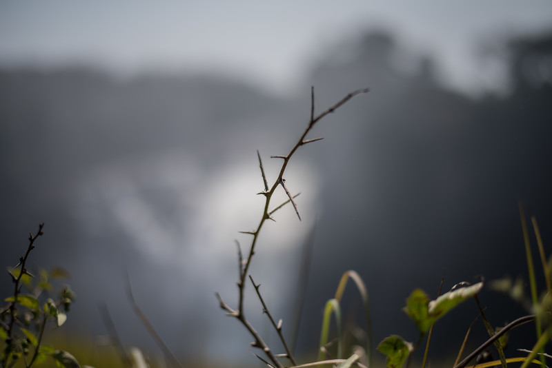 Victoria Falls-89.jpg