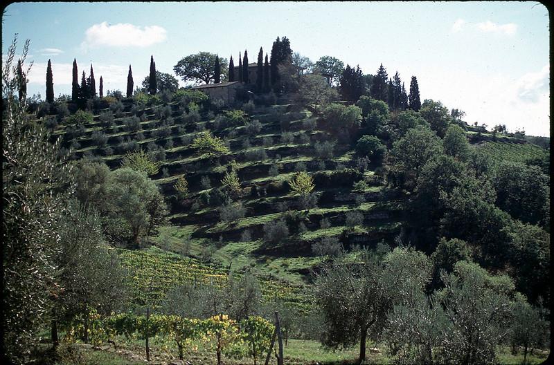 Castellino in Chianti