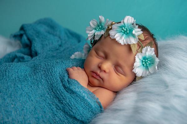 Arrya Newborn Session
