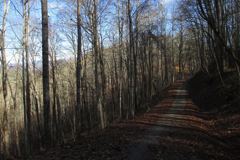 Forest Road 4522