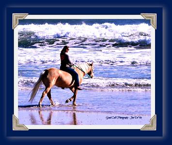 Topsail Beach, NC 12-1-2016
