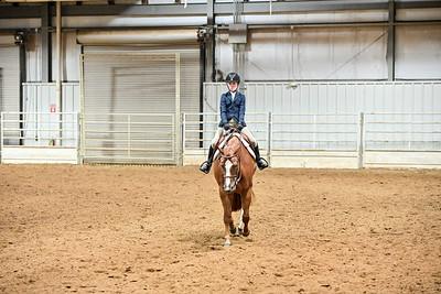 Novis Youth Hunter Under Saddle