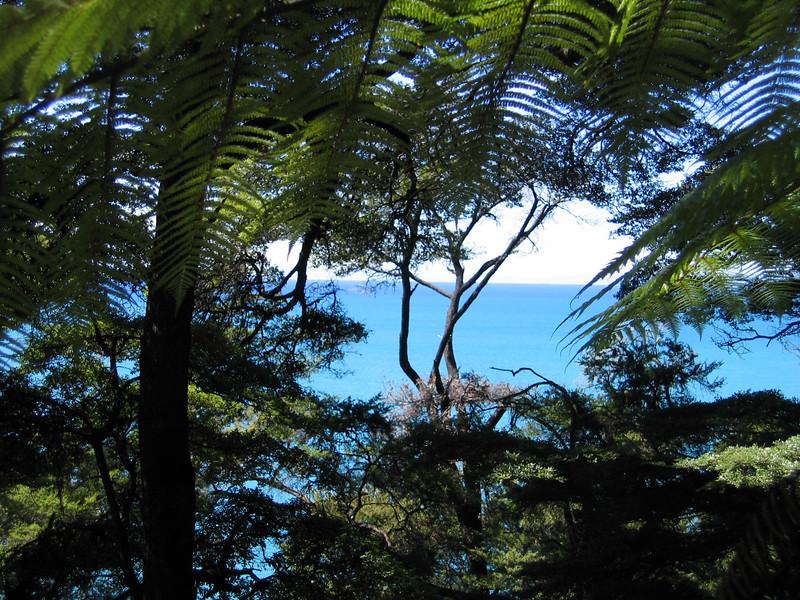 New Zealand 334.jpg