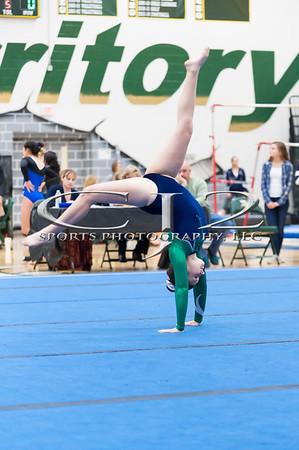12-2-2015 Loudoun Valley Gymnastics Meet