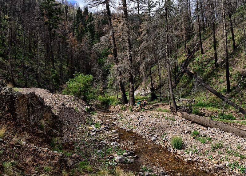 NEA_0384-7x5-Southfork Trail.jpg