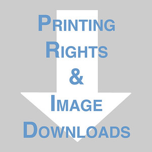 Printing Rights & Image Download