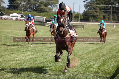 The Foxfield Races Fall Family Day 2017
