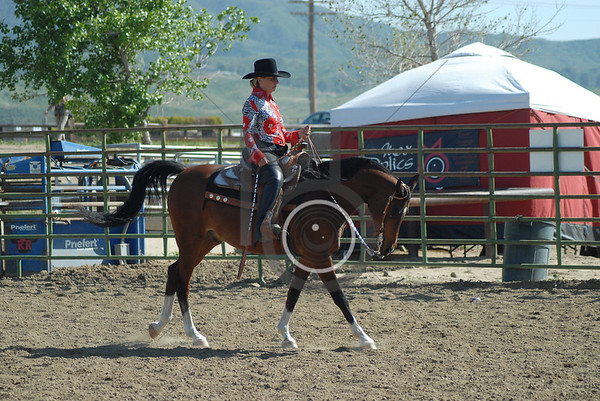 Class 48: All Breed Western Pleasure 40 & over
