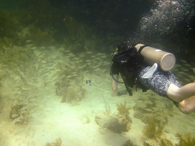 islamorada-diving-44.jpg