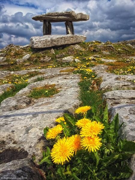 Poulnabrone dolmen in the Burren in Ireland