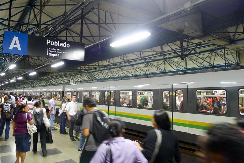 P1170006.jpg