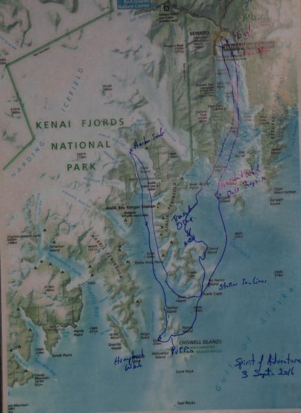 Kenai-Fjords-194.jpg