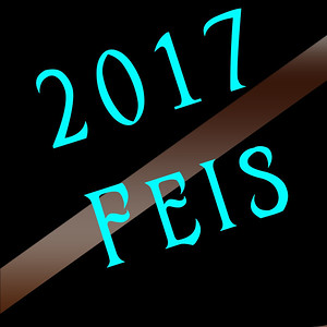 2017 Feis