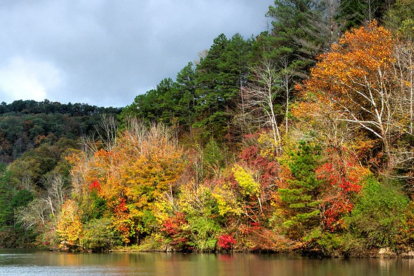 Dewey Lake, KY (11 Images)