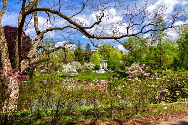 Cambridge Massachusetts, Mount Auburn Cemetery
