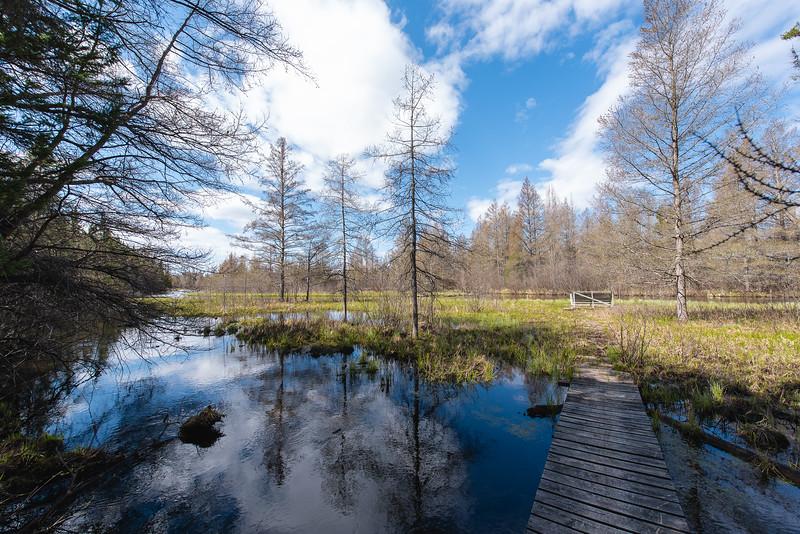 HW_2487-Serenity-Pines-Ct_0018.jpg