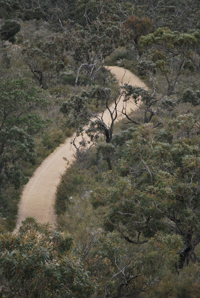 Path - From the Lookout.JPG
